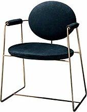 Esszimmerstuhl Edelstahl Dining Chair Sessel Leder