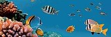 estilker Aquarium 1Dekoration aus Keramik mit Digitaldruck
