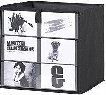 Eternity-Möbel Faltbox Aufbewahrungsbox Fotobox