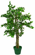 Euro Palms 82506125 Ficus-Benjamini Multi-Stamm,