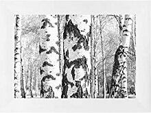 EUROLine50 Bilderrahmen nach Maß für 22 x 25 cm