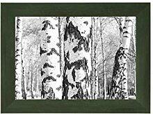 EUROLine50 mm Bilderrahmen für 51 x 42 cm Bilder,