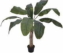 EUROPALMS 82509503 Bananenbaum, 100 cm,