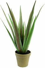 EUROPALMS Aloe-Vera Pflanze, Kunstpflanze, 60cm