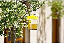 Eurosell Wespenfalle Insekten Falle Wespen Fliegen