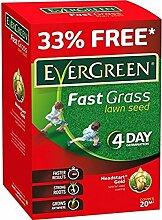 Evergreen Fast Grass, Rasen, für 15qm,