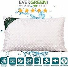 EvergreenWeb-Kissen Bett 40x 70hohe