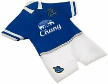 Everton FC Auto Fenster Mini Ki
