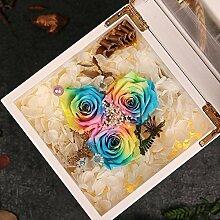 Ewige Rose Blume Leuchtende Music