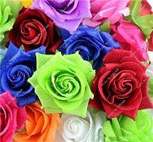 Exotische Rosas / Rose Samen Staudengarten Bonsai Blume Pflanze, Blumentöpfe Pflanz Dekorative Landschaftsbau 120 PC / Beutel 6