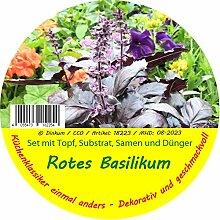 Exotische Samen - Garden to Go Rotes Basilikum von