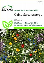 Exotische Samen - Kleine Gartenzwerge von Saflax