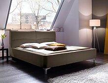 expendio Polsterbett Cloude Bett 160x200 cm