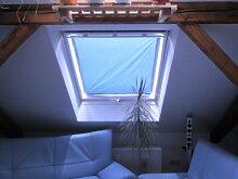 eXsun Sonnenschutz für Velux Dachfenster Rollo, Hitzeschutz, Verdunkelungsrollo - mit Krafthaftsaugern, kein Bohren - kein Nageln - kein Schrauben (Alle Typen! GGU, GGL, GPU, GPL, GHU, GHL, GTU, GTL, GXU, GXL, VU, VL, VKU) WICHTIG = Größe! Bitte auswählen!** Super einfach - der Sonnenschutz wird direkt auf die Glasscheibe - mit Krafthaftsauger - angebracht.. Komplett!! Alles dabei! * (Blau / Silber, Velux FK 06 = 48x98cm)