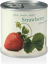 Extragifts Blumen in der Dose - Erdbeere / Strawberry