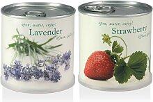 Extragifts Blumen in der Dose Geschenk Set - Erdbeere - Lavendel