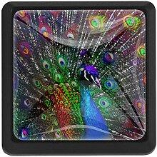 EZIOLY Regenbogenfarbene Pfauenfedern,