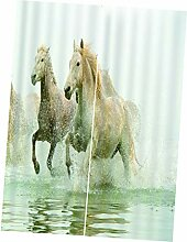 F Fityle Pferd Verdunkelungsvorhang Thermovorhang