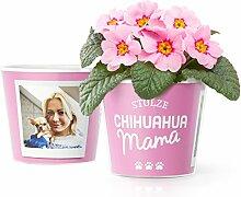 Facepot Chihuahua Geschenk Blumentopf (ø16cm) |