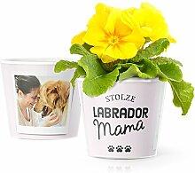 Facepot Labrador Geschenk Blumentopf (ø16cm) |