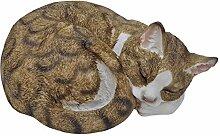 Fachhandel Plus Dekofigur Katze eingerollt