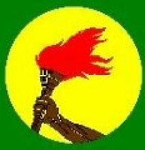 Fahne Zaire Afrika Flagge Grösse 1,50x0,90m