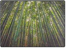 FAJRO Bambus Wald Natur Teppich für