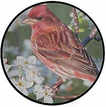 FAJRO Teppich, rund, mit roten Vögeln,