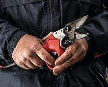 FALCO 811 Professionelle Schere mit Batterie