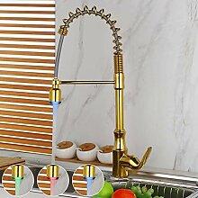 FAPPT Wasserhahn Goldene poliert küchenarmatur