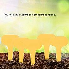 Farbe Pflanze Tags 100Pcs für Kindergarten