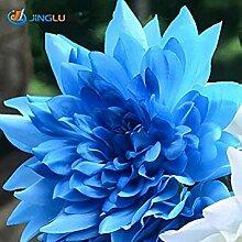 Fash Lady 4: Geben Sie Blumenzwiebel Dahlia