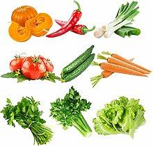 FATO. Egrow 10 Arten gemischte Gemüsesamen Echt
