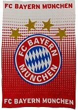FC Bayern München Fleecedecke Logo rot/weiß