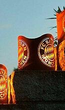 FCB FC Bayern Windlicht Fanartikel Feuerkorb