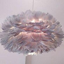Feder Decke Lampenschirm, Einfache Luxus-Rosa