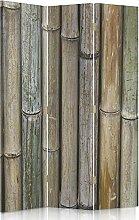 Feeby Frames. Raumteiler, Gedruckten auf Canvas, Leinwand Wandschirme, dekorative Trennwand, Paravent beidseitig, 3 teilig (110x150 cm), BAMBUS, PFLANZE, NATUR, BRAUN