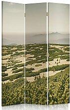 Feeby Frames. Raumteiler, Gedruckten aufCanvas, Leinwand Wandschirme, dekorative Trennwand, Paravent beidseitig, 3 teilig (110x150 cm), RESTAURANT, WEINGUT, WEIN GEDEIHT, GRÜN, BEIGE