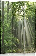 Feeby Frames. Raumteiler, Gedruckten aufCanvas, Leinwand Wandschirme, dekorative Trennwand, Paravent beidseitig, 3 teilig, 360° (110x180 cm), WALD LICHTUNG GRÜN