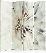 Feeby Frames. Raumteiler, Gedruckten auf Canvas, Leinwand Wandschirme, dekorative Trennwand, Paravent beidseitig, 4 teilig (145x180 cm), PFLANZE, LÖWENZAHN, NATUR, WEIß