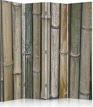 Feeby Frames. Raumteiler, Gedruckten auf Canvas, Leinwand Wandschirme, dekorative Trennwand, Paravent beidseitig, 4 teilig (145x180 cm), BAMBUS, PFLANZE, NATUR, BRAUN