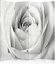 Feeby Frames. Raumteiler, Ggedruckten aufCanvas, Leinwand Wandschirme, dekorative Trennwand, Paravent einseitig, 4 teilig (145x180 cm), WEIßE ROSE