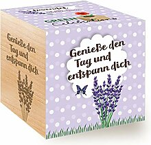 Feel Green Celebrations Ecocube, Lavendel Bio