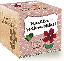 Feel Green Celebrations Ecocube, Schokoblume,