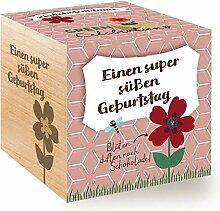 Feel Green Celebrations Ecocube, Schokoladenblume,