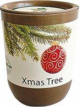 Feel Green Ecocan, Xmas Tree, Nachhaltige