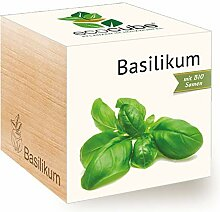 Feel Green Ecocube Basilikum, Bio Zertifiziert,