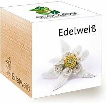 Feel Green Ecocube Edelweiß, Nachhaltige