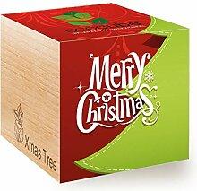 Feel Green Ecocube Merry Christmas/1R,
