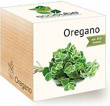 Feel Green Ecocube Oregano, Bio Samen, Nachhaltige